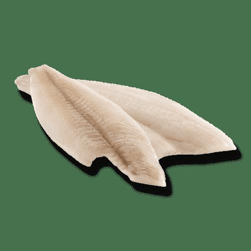 isola-fish-schar-filet-enkel